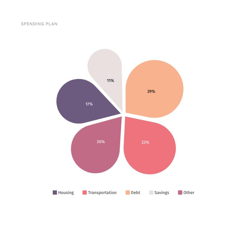 Spending Plan Pie Chart